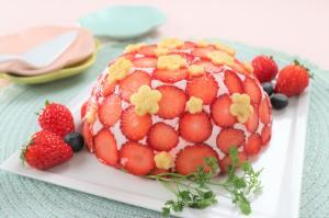 いちごの水玉ドームケーキ