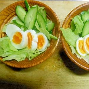 レタスと茹で卵のアンチョビマヨサラダ