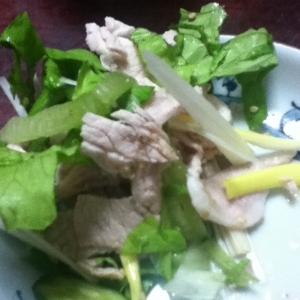 グリーンカールと白ネギの豚しゃぶサラダ