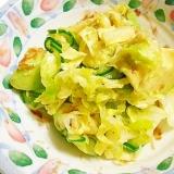 アボカド・きゃべつ・きゅうりのサラダ
