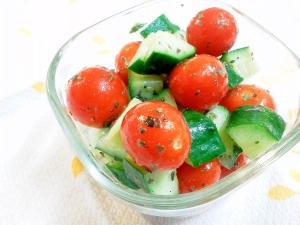 パクパク食べやすい♪簡単トマトとキュウリのサラダ