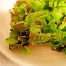 レタスで巻き巻き 胡瓜と大葉の手巻きサラダ♪