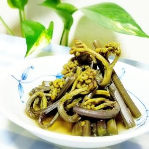 春野菜★ワラビの煮物