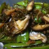 辛くないシシトウの炒め煮