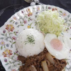 ワンプレート洋食★ビーフライス