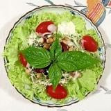 リーフレタス とサラダビーンズ5のサラダ