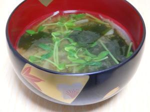 豆苗とわかめのお味噌汁