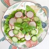サラダチキンの胡瓜、ラディッシュ、枝豆のサラダ