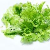 春野菜★ピリッとくるわさび菜のやみつきサラダ★