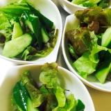 緑いっぱい!きゅうりとサニーレタスのグリーンサラダ