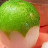 意外と簡単✿冬瓜の皮の剥き方と種の簡単な取り方❤