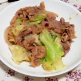 切り落とし肉で簡単節約!キャベツと玉ねぎの塩炒め