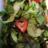レタスときゅうりの塩昆布サラダ