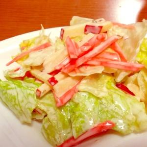 食感楽しい♪リンゴとレタスの彩りサラダ☆