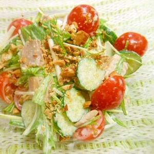 ★焼き豚入り野菜サラダ★