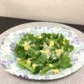 サニーレタスとブロッコリーとコーンの洋風サラダ