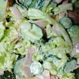 キャベツときゅうりのサラダ