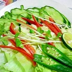 乾燥大根のサラダ