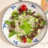 レーズンを入れて、サラダ菜のサラダ