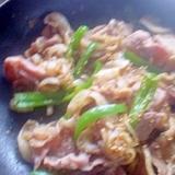 ジンギスカンのタレで焼肉ぅ~☆