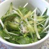 妊婦さんにおすすめ☆水菜としらすのサラダ