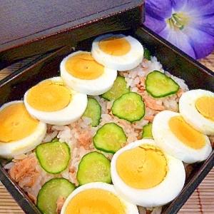 塩麹ご飯と混ぜるだけ!鮭ちらし寿司