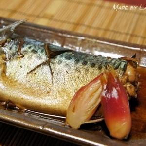 目指せお惣菜屋の味! 鯖の醤油煮