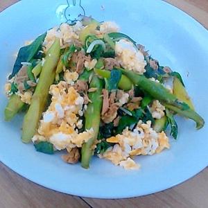 簡単スピードレシピだからお弁当に青野菜ツナ卵炒め