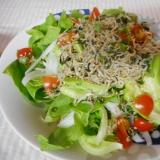 サラダ菜のシソジャコサラダ