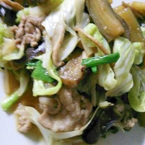 ナスとキャベツと椎茸と豚肉の焼肉風味