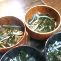 もやしとわかめの中華スープ