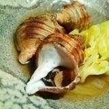 お酒もご飯もすすむ、つぶ貝ときゃべつのくたくた煮