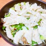 野菜と餃子の蒸し焼き