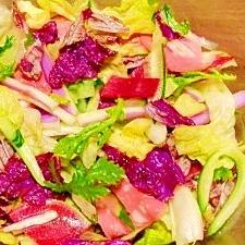 柚子胡椒☆野菜サラダ