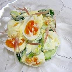 胃に優しく ゆで卵のワサマヨサラダ