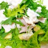 春の草原サラダ♪ハム・アボカド入りのグリーンサラダ