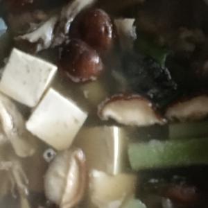 あんこう、椎茸、舞茸、ネギ、絹ごし豆腐の鍋