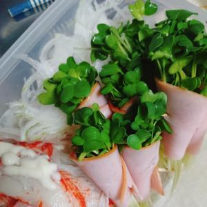 新玉ねぎと貝割れ巻きのサラダ
