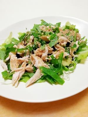 鶏ささ身とタップリ大葉のグリーン和風サラダ