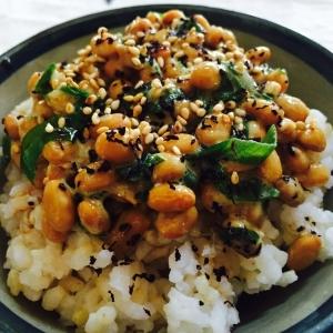 ネギたっぷり納豆のせゆかりがけ玄米ごはん