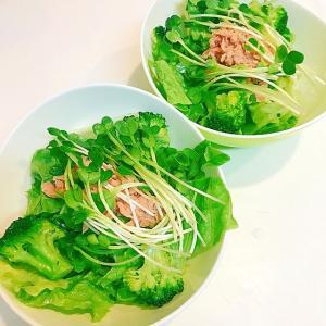 今日は時間が無い!☆冷凍ブロッコリーとツナのサラダ