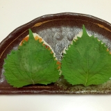 発酵パワー!「味噌」レシピ