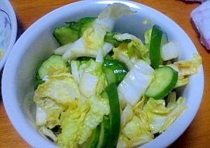 簡単!白菜ときゅうりの漬物