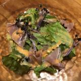 パプリカドレッシングで生ハムのサニーレタスのサラダ