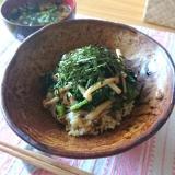 【時短・ヘルシー朝ご飯】明太子&つるむらさき丼