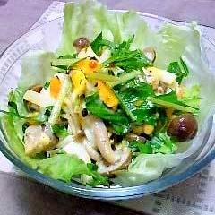たまご&しめじ&水菜のマヨラーサラダ