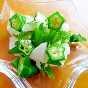 オクラと大根と大葉のコロコロサラダ