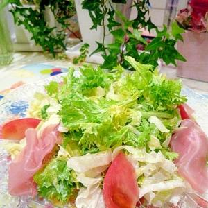 わさび菜のサラダ♪