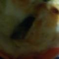 ヘルシー豆腐グラタン