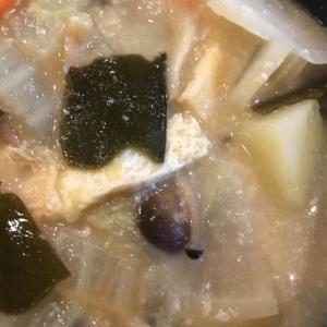 白菜と人参とじゃがいもと昆布としめじと油揚げの粕汁